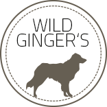 wildgingers, Retriever Welpen